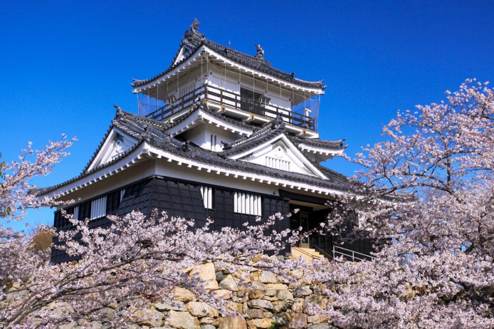 【静岡】浜松城の御城印|販売場所はどこ?いくらで買えるの?