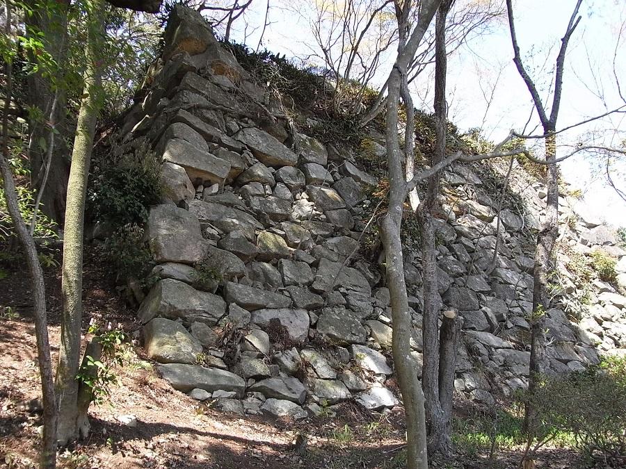 八幡山城の御城印